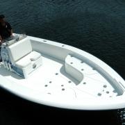 Dolphin Boats