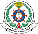 Royal Saudi Navy